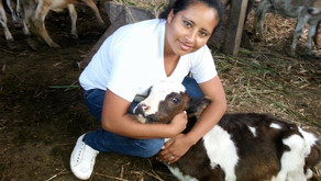 Graduate Success Story: Ruth, the Veterinarian