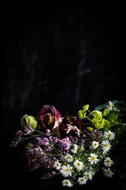 bloemen op donkere achtergrond _luciebec