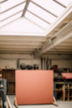 LEONNEPHOTOGRAPHY-STUDIOWILDPOPPY(27van6