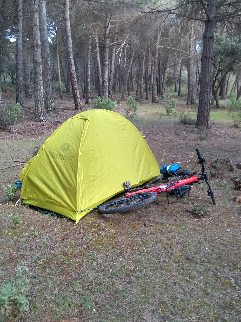 The pitched up tent with my bike tied to it