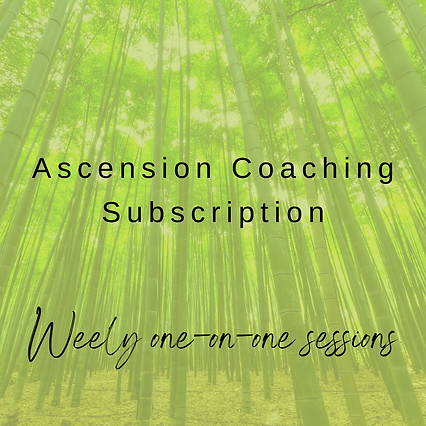 Ascension Coaching Website Designs (26).png