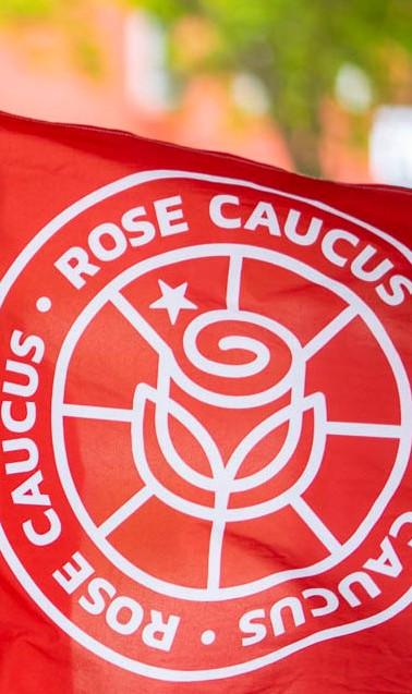Caucus Flag