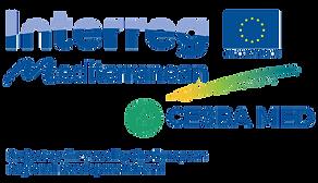 Logo + Co-financing ohne Hintergrund.png
