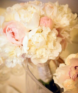 floral angela 1