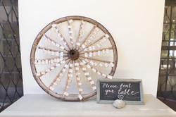 polus wheel