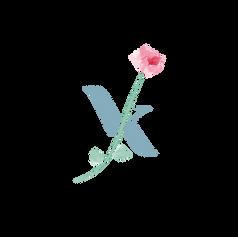 pmg_VK_logo-08.png