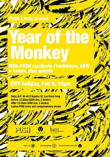 A4 Year of the Monkey copy.jpg