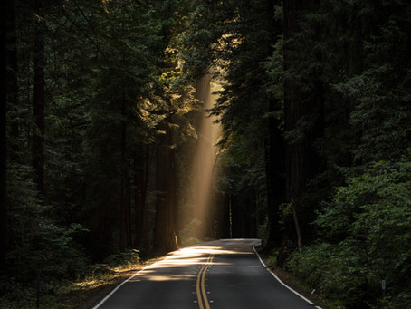 When Life Opens A Road, Take It