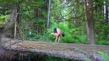 科學研究報告: 報告瑜珈是如何運作的