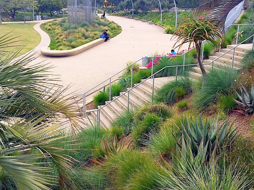 How I Stumbled Upon This Super Cool Park in Cali (fornia)