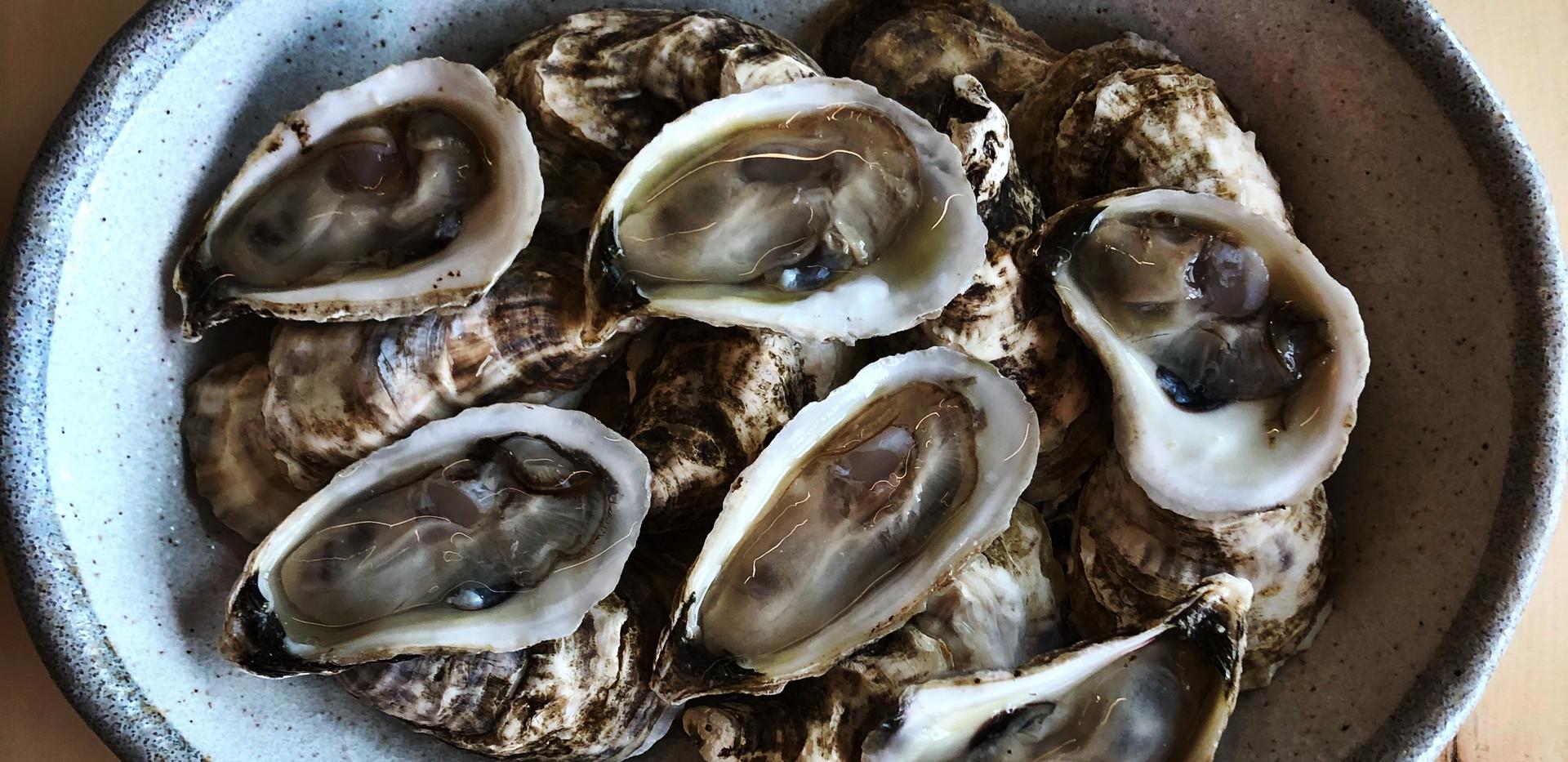 P.E.I Oysters