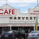 HarvestCafe.jpg