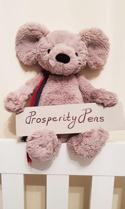 prosperity-pens