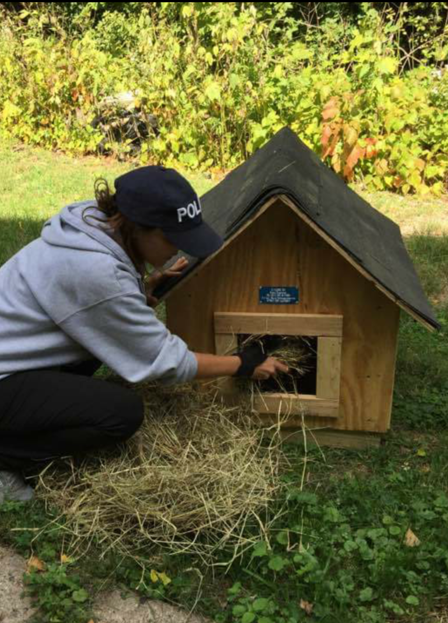 Feral cat house donation