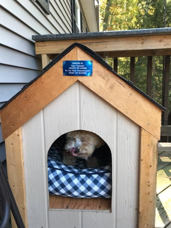 Rosie loves her house