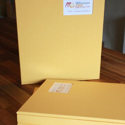 Bespoke yellow bookcloth portfolio albums
