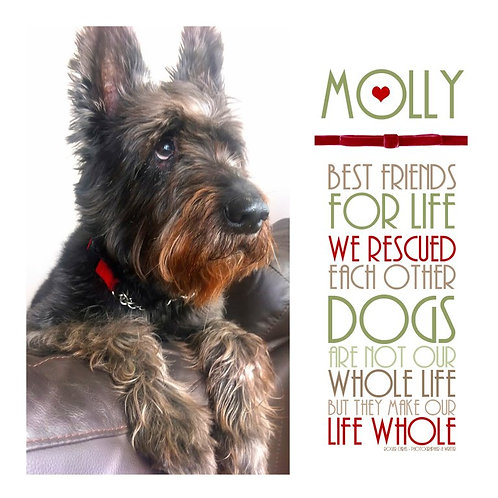 Commemorative Dog Wordart