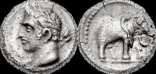Moneda cartaginesa. Cap d'un home coronat amb fulles de llorer. Elefant de guerra.