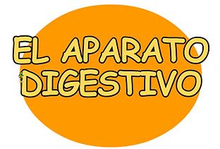 ap digestivo.png