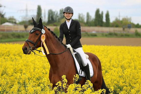 Turniererfolg für die Reiter in Diedenbergen und Stephanshausen