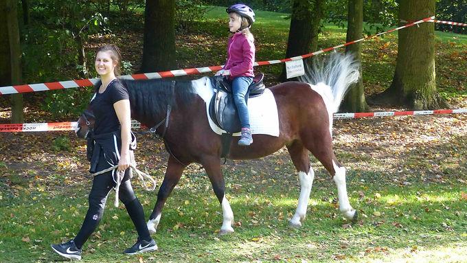 Spiele im Park mit unseren Ponys
