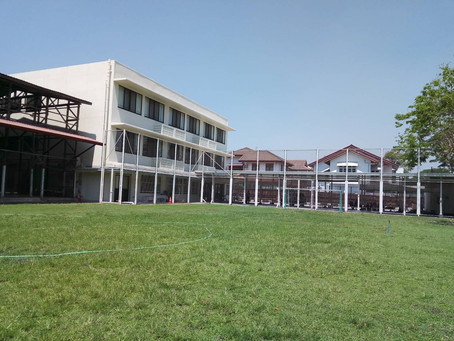 校庭の芝生