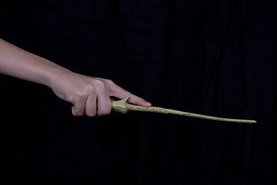 Hand holding magic wand..jpg