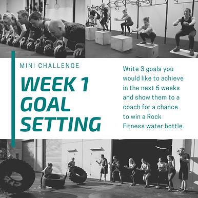 week 1 Goal Setting.png