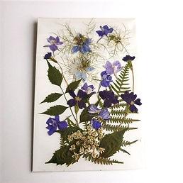 pressedflowers18_edited.jpg