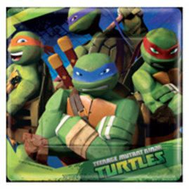 Teenage Mutant Ninja Turtle party plates 23 cm x 8