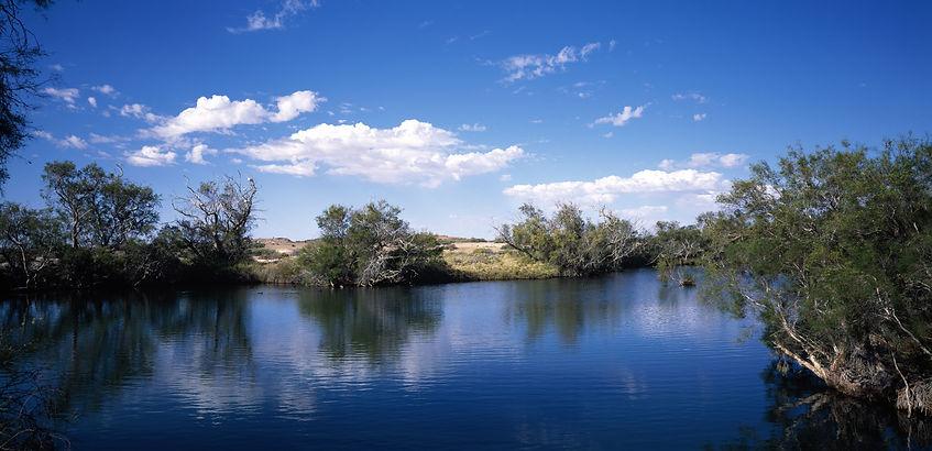 Canva - Dalhousie Springs.jpg