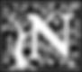 N Logo Bigger.png