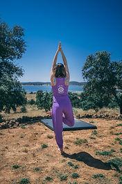 Yoga pose Vkrshasana