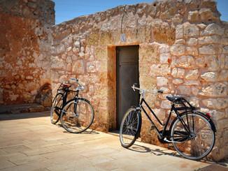 Bike Tour Vintage.JPG