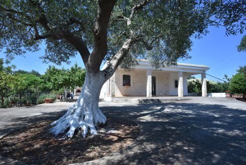 10. Villa Gelsomino