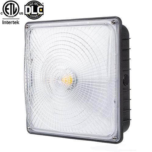 Parmida LED Canopy Light, 45W, 0-10V Dimmable, 5200lm, 110-277VAC, IP65