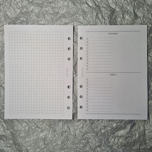 [B6]Dois dias por página