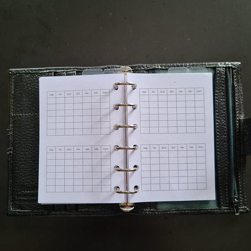 [618] Dois meses por página