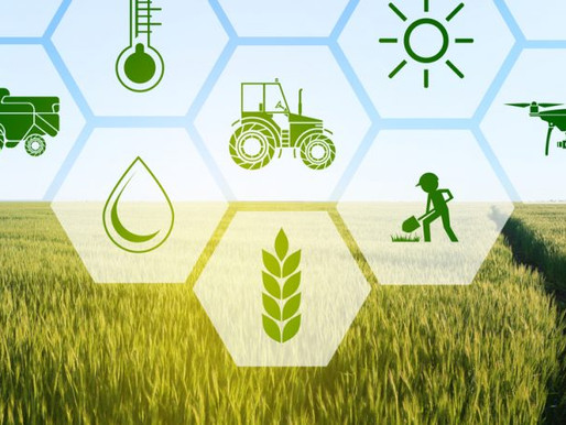 IoT and The AgTech Revolution