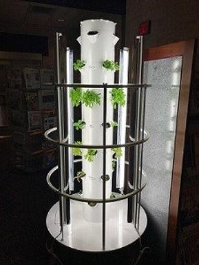 Homegrown Gwinnett Project – Tower Gardens inside Public Libraries