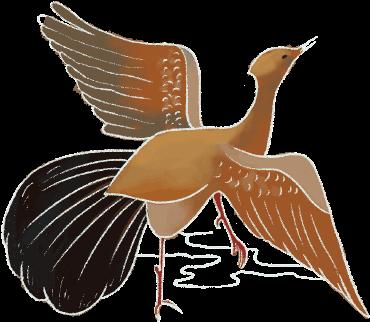 鳥 透明.png