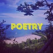 InstaBio-Poetry.png