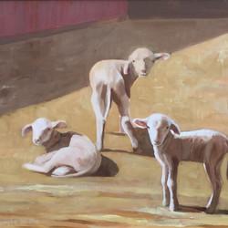 Three Little Lambs 20x24.jpg