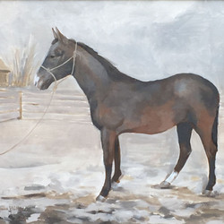 The YEarling 16x20.jpg