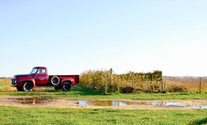 Rural Truck-1.jpg