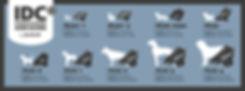 IDC_harness_sizes_700×260_.jpg
