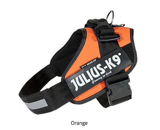 Julius K-9 IDC harness
