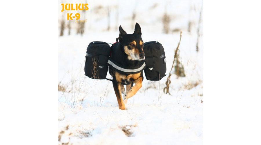 Julius K-9 IDC Sidebags for IDC Powerharness - Black