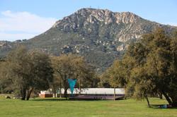 TealPanda Sweetwater Ranch