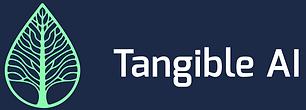 TangibleAI.png